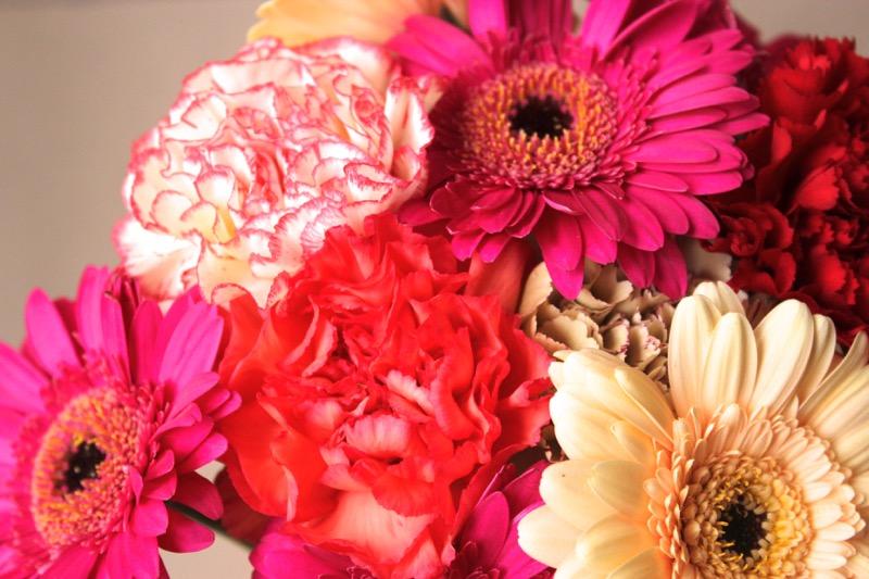 fleurs-couleurs-vives